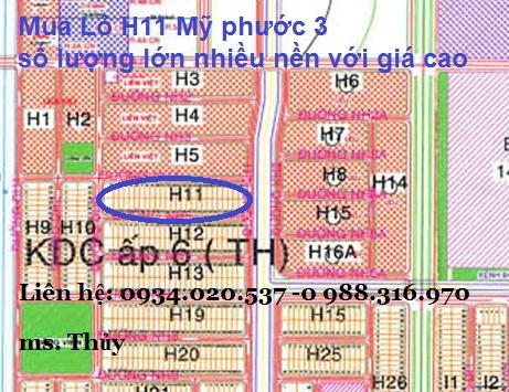 Lô H11 Mỹ phước 3